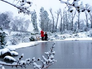 socal snowstorm proposal