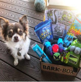 Barkbox Dog Gifts